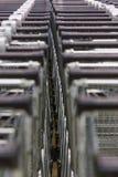 Много пустых магазинных тележкеа в ряд Стоковое Изображение