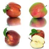 Много различных яблок на белых яблоках без предпосылки, много предпосылки, красных и желтых различных Стоковое фото RF