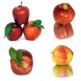 Много различных яблок на белых яблоках без предпосылки, много предпосылки, красных и желтых различных Стоковое Фото
