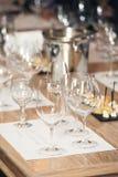 Много различные бокалы на дегустации вин Стоковые Изображения