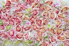 Много розовых роз как предпосылка стоковое изображение