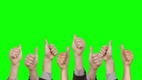 Много рук показывая большие пальцы руки вверх сток-видео