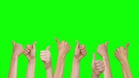 Много рук показывая большие пальцы руки вверх акции видеоматериалы