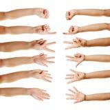 Много рук подсчитывая с перстами Стоковые Изображения RF