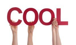 Много рук людей держа красное прямое слово холодный Стоковая Фотография RF