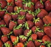 Много свежих, естественных и зрелых ягод клубники Стоковое Фото