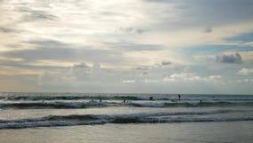 Много серферов едут океанские волны на пляже на Бали сток-видео