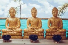 Много сидя статуи Будды в Таиланде Стоковое Фото