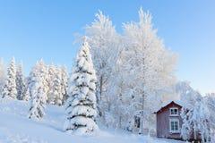 Много снег Стоковая Фотография