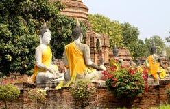 Много статуй Buddhas стоковое фото rf