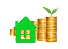 Много столбцов золотых монеток, символа дома и зеленого растения Стоковая Фотография