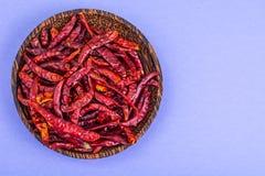 Много стручков высушенного красного перца chili на пастельной предпосылке Стоковое фото RF