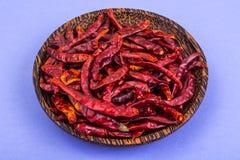 Много стручков высушенного красного перца chili на пастельной предпосылке Стоковое Изображение RF