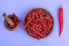 Много стручков высушенного красного перца chili на пастельной предпосылке Стоковое Изображение