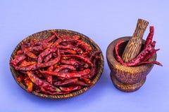 Много стручков высушенного красного перца chili на пастельной предпосылке Стоковые Изображения
