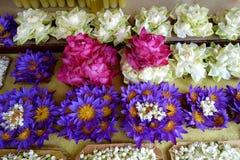 Много цветут букет лотоса для предложения стоковое фото rf