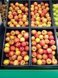 Много яблок плодоовощей красных желтых лежа в коробках Стоковые Изображения