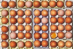 Много яичка и уникально одно треснули над коробками яичка Стоковые Изображения