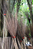 Много besoms полагаются дерево стоковые изображения