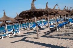 Много longes фаэтона на пляже Стоковое Изображение