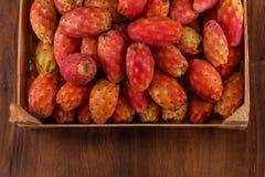 Много Nopal или кактус на древесине Стоковое Фото