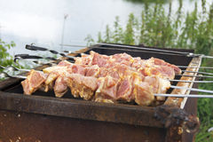 Много Shish Kebab от различного мяса с перцем Стоковое Изображение RF