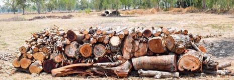 Много Timber на предпосылке фермы Стоковое Изображение