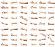 Множественные мужские кавказские жесты рукой изолированные над белым ба стоковое изображение rf