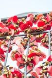 Множество влюбленности красного замка сердца Romance Стоковая Фотография
