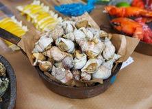 Множество морепродуктов, veined rapa whelk на лотке гриля Стоковые Изображения
