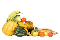 множество gourds Стоковое Изображение
