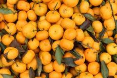 Множество tangerines или померанца в рынке Стоковое Фото