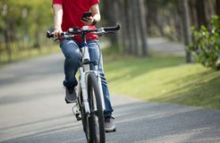 Мобильный телефон пользы велосипедиста пока едущ велосипед в тропическом парке Стоковое Изображение
