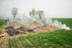 могила Китайск-стиля Стоковые Изображения