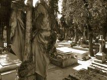 могилы стоковая фотография rf