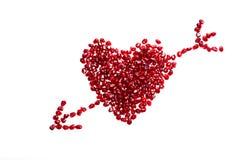могут superfoods съемки семян pomegranate макроса одного холестерола близкие более низкие вверх Стоковая Фотография RF