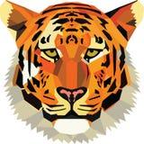 Могущественный тигр иллюстрация штока