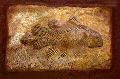 Модельное ископаемый рыб Стоковые Фото