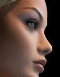 модельно улучшите Стоковые Изображения RF