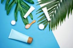 Модель-макет косметической cream бутылки, пустого пакета ярлыка и ингридиентов на зеленом цвете выходит предпосылка Стоковое Изображение