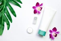 Модель-макет косметической cream бутылки, пустого пакета ярлыка и ингридиентов на зеленом цвете выходит предпосылка Стоковое Фото
