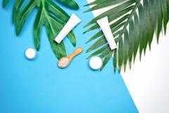 Модель-макет косметической cream бутылки, пустого пакета ярлыка и ингридиентов на зеленом цвете выходит предпосылка Стоковая Фотография