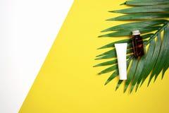 Модель-макет косметической cream бутылки, пустого пакета ярлыка и ингридиентов на зеленом цвете выходит предпосылка Стоковые Изображения