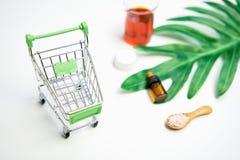 Модель-макет косметической cream бутылки, пустого пакета ярлыка и ингридиентов на зеленом цвете выходит предпосылка Стоковые Фото