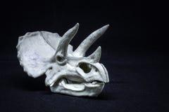 Модель черепа динозавра трицератопса главная на черной предпосылке стоковое фото rf