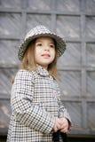 модное малое Стоковые Фотографии RF
