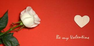 мое Валентайн Белая роза и сердце на красной предпосылке Стоковые Фото