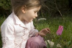 мое цветка симпатичное Стоковое Фото
