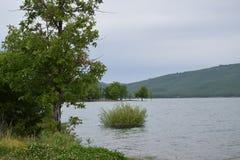 Мое любимое озеро! Стоковые Изображения