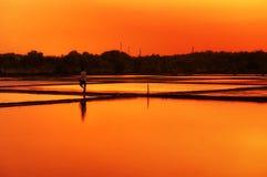 Может заход солнца южный Вьетнам рисовых полей Gio Стоковые Изображения